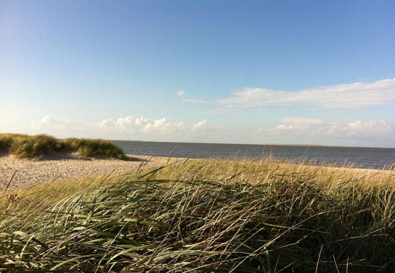 Strand in Schillig